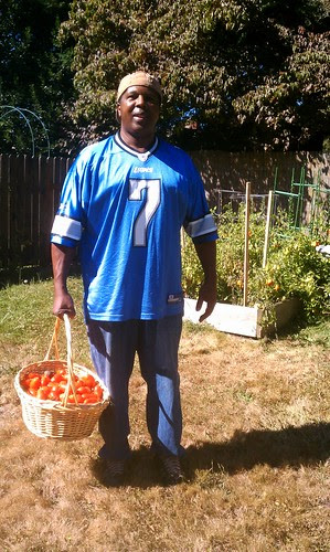 Apollo and our first batch of tomatoes