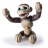 Zoomer - Chimp