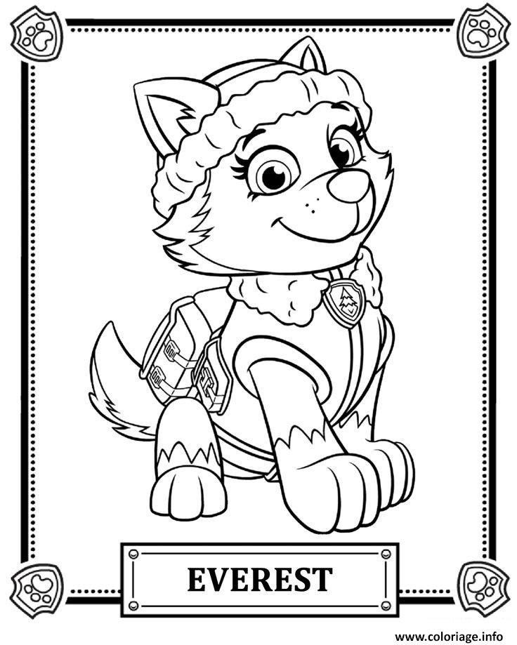 Coloriage Everest Pat Patrouille Jecoloriecom
