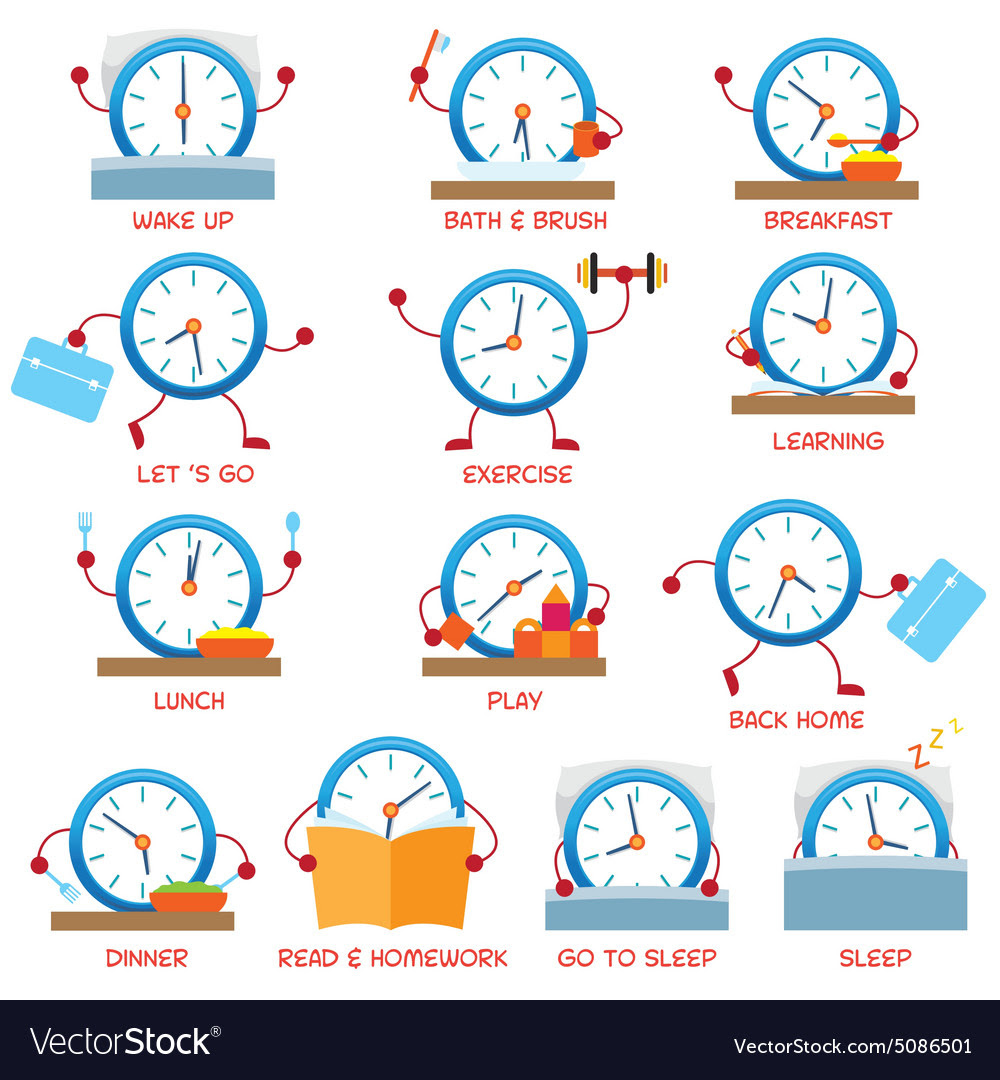 Clock character daily routine timetable vector by muchmania ...