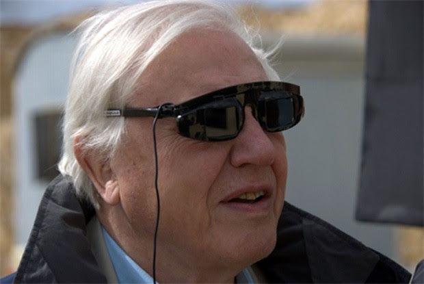 David Attenborough's Galapagos 3D begins airing New Year's Day in the UK on Sky 3D