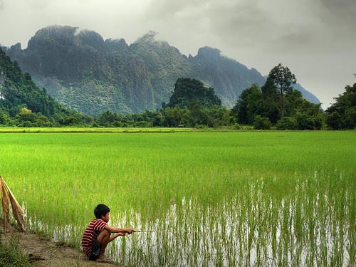 Fishin' in the paddy fields por B℮n