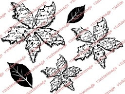 Visible Image Poinsettia stamp set