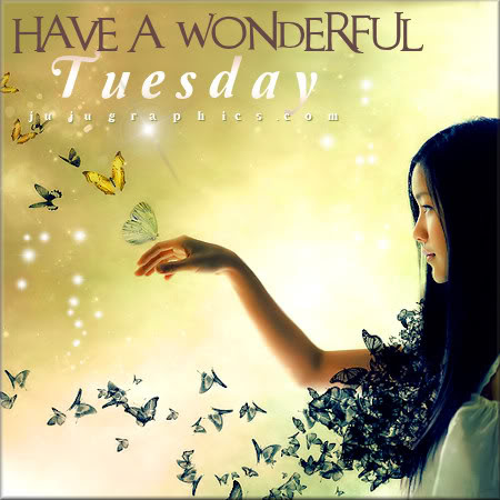 Have A Wonderful Tuesday 8 Graphics Quotes Comments Images