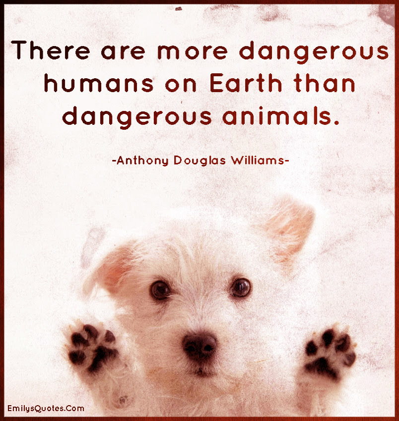 There Are More Dangerous Humans On Earth Than Dangerous Animals