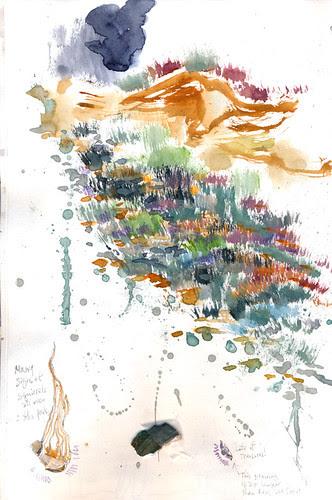 July 2013: Point Lobos