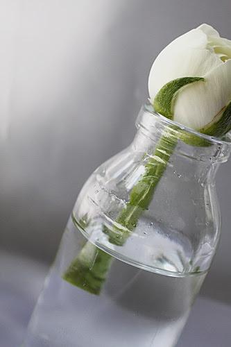 flower in bottle