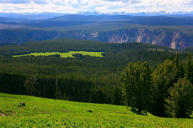 IMG_3051 Mount Washburn Trail