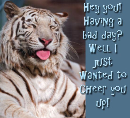 I Just Wanted To Cheer You Up Free Cheer Up Ecards Greeting Cards
