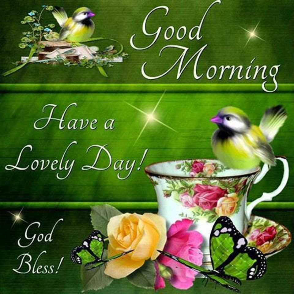 Good Morning Have A Lovely Day Spring Quote Pictures Photos And