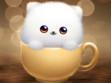 Cute Gambar Kucing Comel Kartun Kucingcomel Com