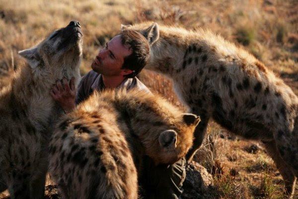 Кевин Ричардсон в окружении гиен. Фото