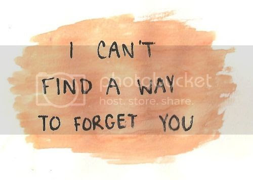 I Can 39 T Forget You Quotes