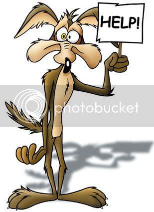 wile e coyote help photo: Wile E. Coyote. HELP!!! wile-e-coyote.jpg