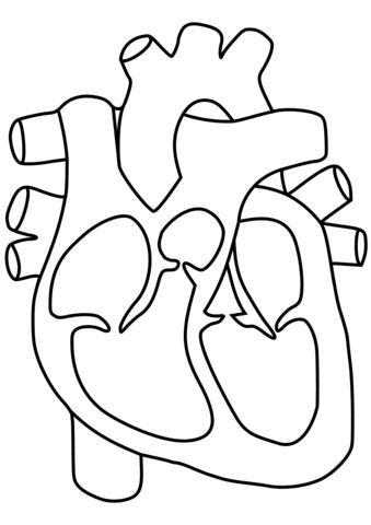 Dibujo De Corazón Para Colorear Dibujos Para Colorear Imprimir Gratis