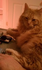 Jasper helping troubleshoot the computer