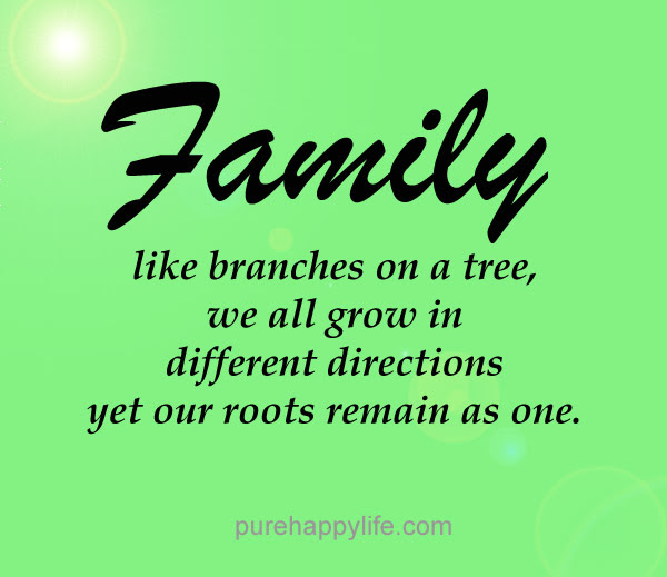 Quotes About Roots And Branches 54 Quotes