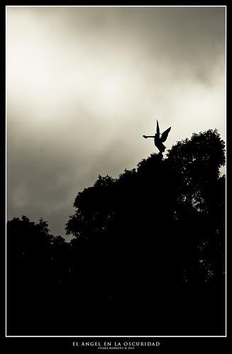 El Ángel en la oscuridad