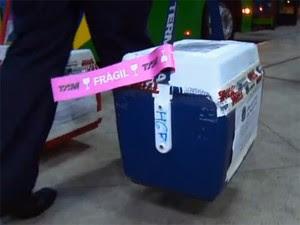 A partir de agora, órgãos para transplantes terão prioridade em voos de cinco companhias aéreas. (Foto: Reprodução/TV Globo)