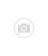 Alternative To Fossil Fuels Energy Sources
