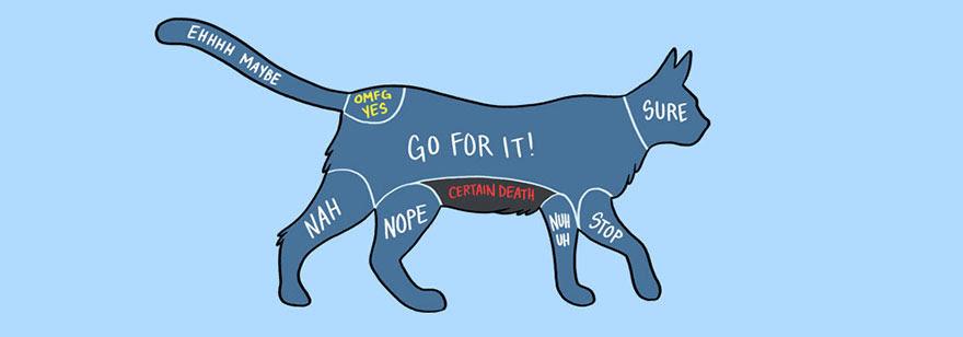 Ilustrasi Kucing Dalam Diagram