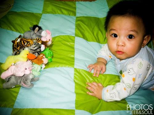 Qeeb @ 7 months