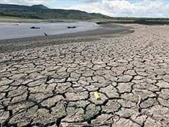 2015 Set to be Hottest on Record, 2016 Even Hotter Due to El Nino: UN
