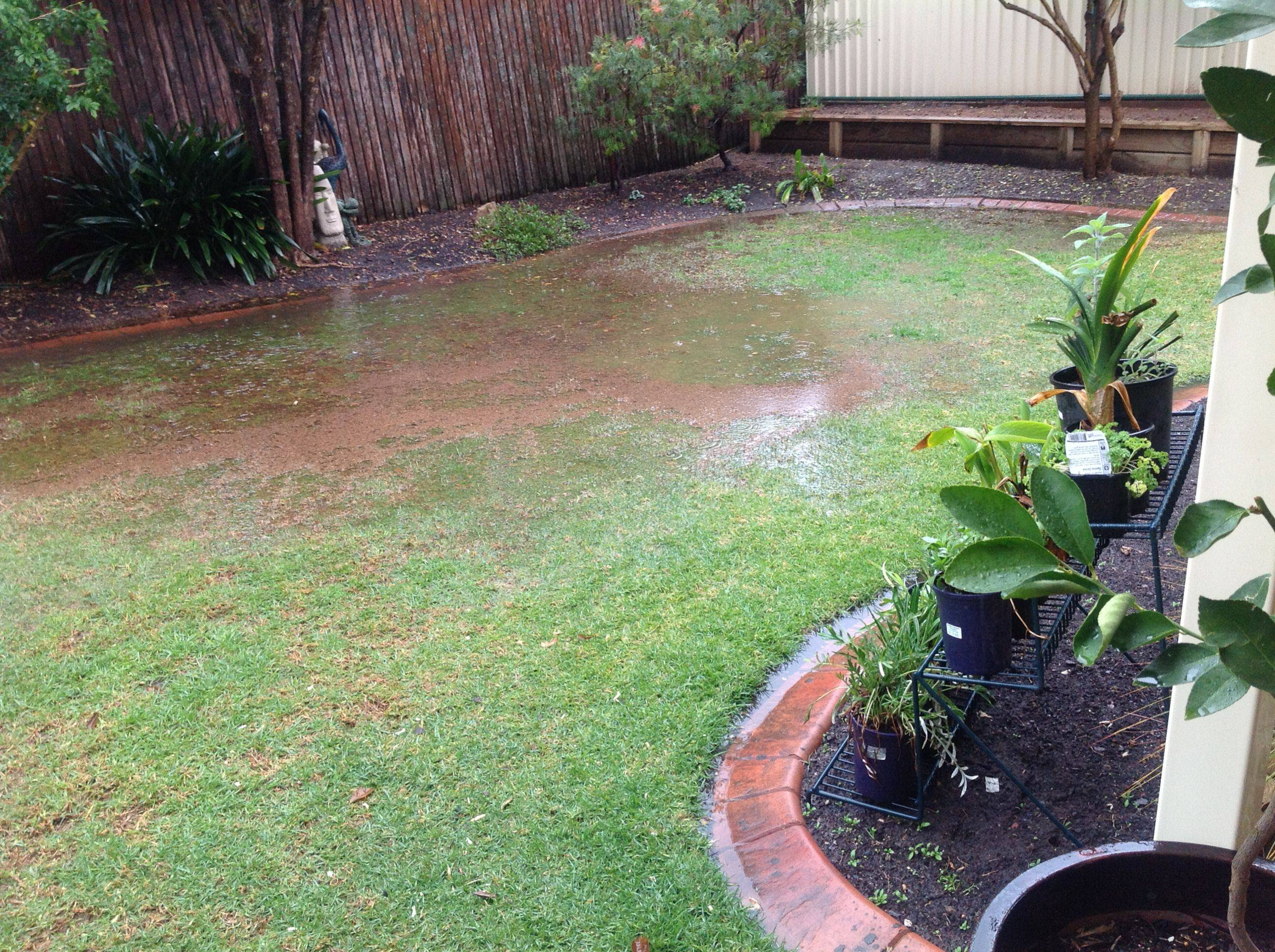 View Topic Backyard Flooding And Drainage Problems Home