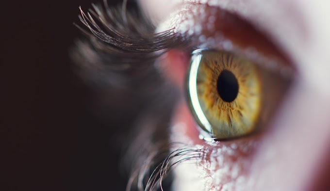 Retinal imaging shows promise in early detection of Alzheimer's