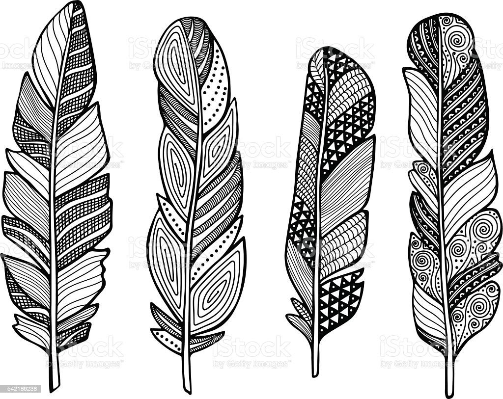 Feather Vector Set stock vector art 542186238  iStock