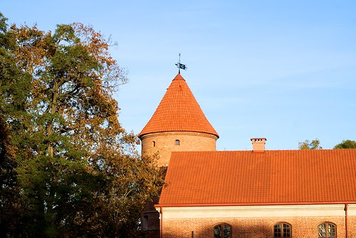 Sunny autumn day   Raudondvaris
