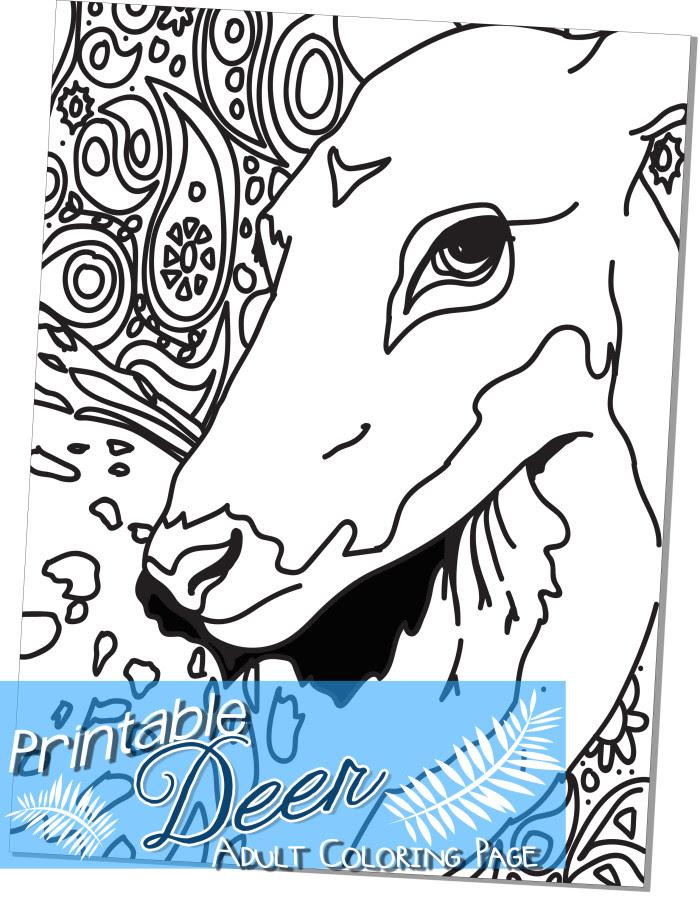 Free Printable Deer Adult Coloring Page - Miniature ...