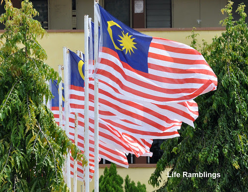 flags 010