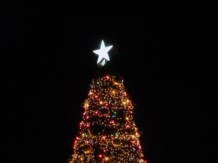 ツリーと星のクリスマスイルミネーションの写真素材フリー高画質