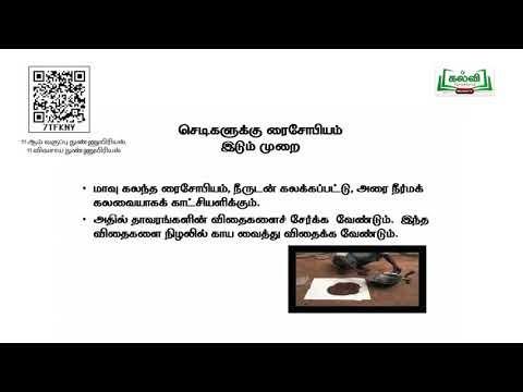 11th Microbiology விவசாய நுண்ணுயிரியல் அலகு 5பகுதி 2 Kalvi TV