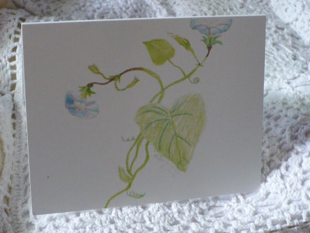 Morning Glory Flower Note Card - Original Artwork - by Reflections of Kayla