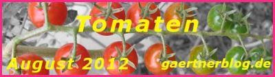 Garten-Koch-Event August 2012: Tomaten [31.08.2012]