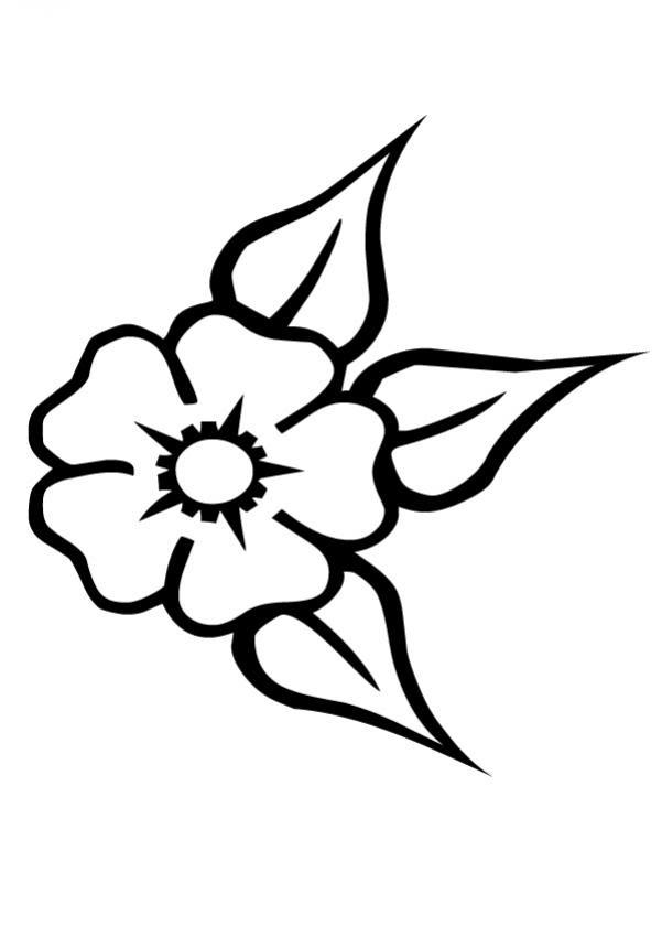 Dibujos Para Colorear Las Flores Es Hellokids Com