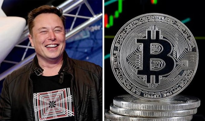 Elon Musk slammed for 'Doge-for-Tesla' tease: 'Beginning of end for Bitcoin'