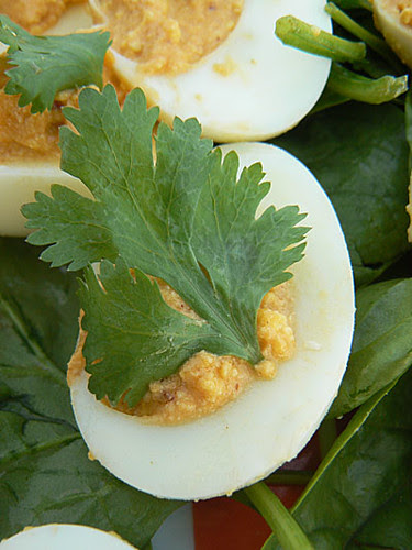 deviled eggs 2.jpg