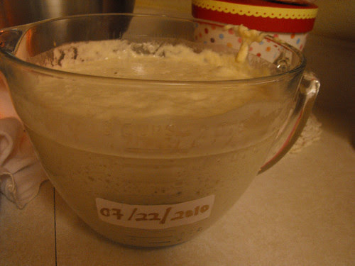 Sourdough Starter Day 1