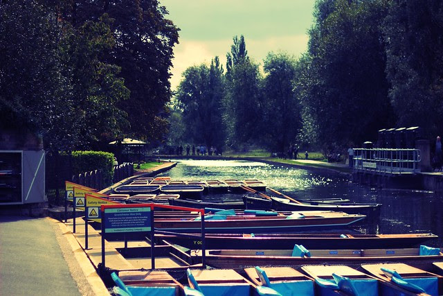Cambridge_36