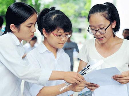 dạy học, doanh nghiệp, lợi nhuận, phi lợi nhuận, Vũ Đức Vượng, ĐH Hoa Sen
