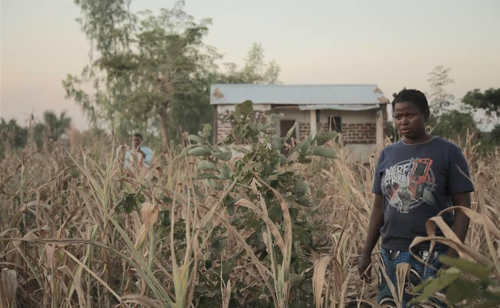 Alex Raxton posa en el campo que trabaja ante su casa.