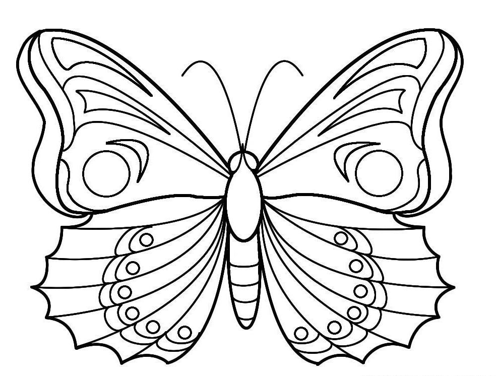 Coloriage Papillon Des Photos Du Papillon à Imprimer Et Colorier