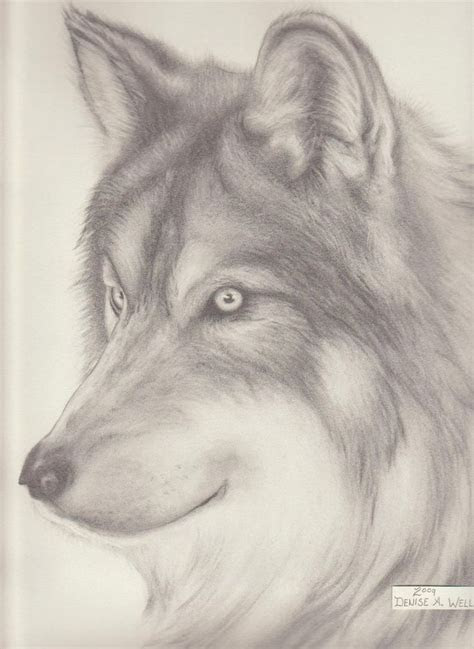 wolf head drawing ideas  pinterest