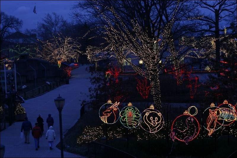 lights before christmas hours x mas - Riverbanks Zoo Lights Before Christmas