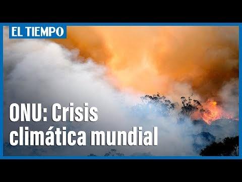 Estamos al borde del precipicio, advierte la ONU sobre cambio climático