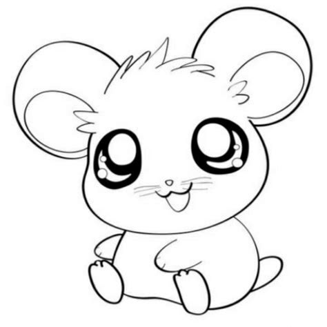cute baby animal coloring pages  print gab