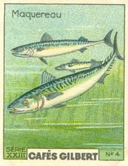 gilbert poissons 4